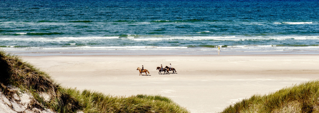 Reiten in Blokhus am Strand